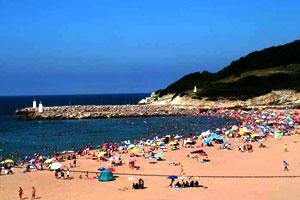 Ağva Plajlarında Denizin ve Güneşin Tadını Çıkarın!